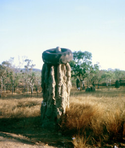 A termite nest between Katherine and Darwin in the Northern Territory