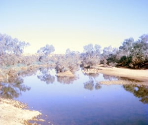 The Finke River to the south of Alice Springs, Northern Territory
